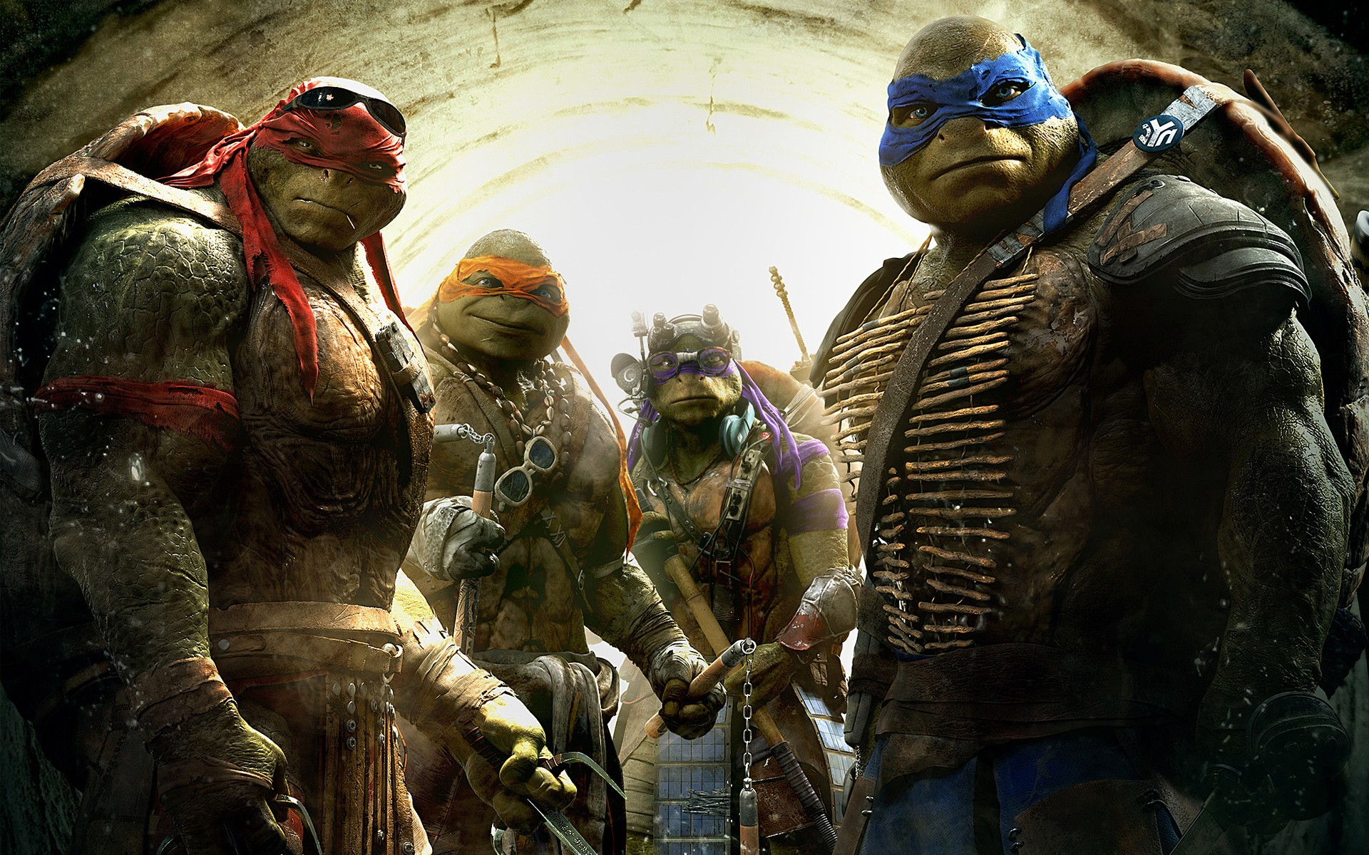 1440x900 Teenage Mutant Ninja Turtles 1440x900 Resolution Hd