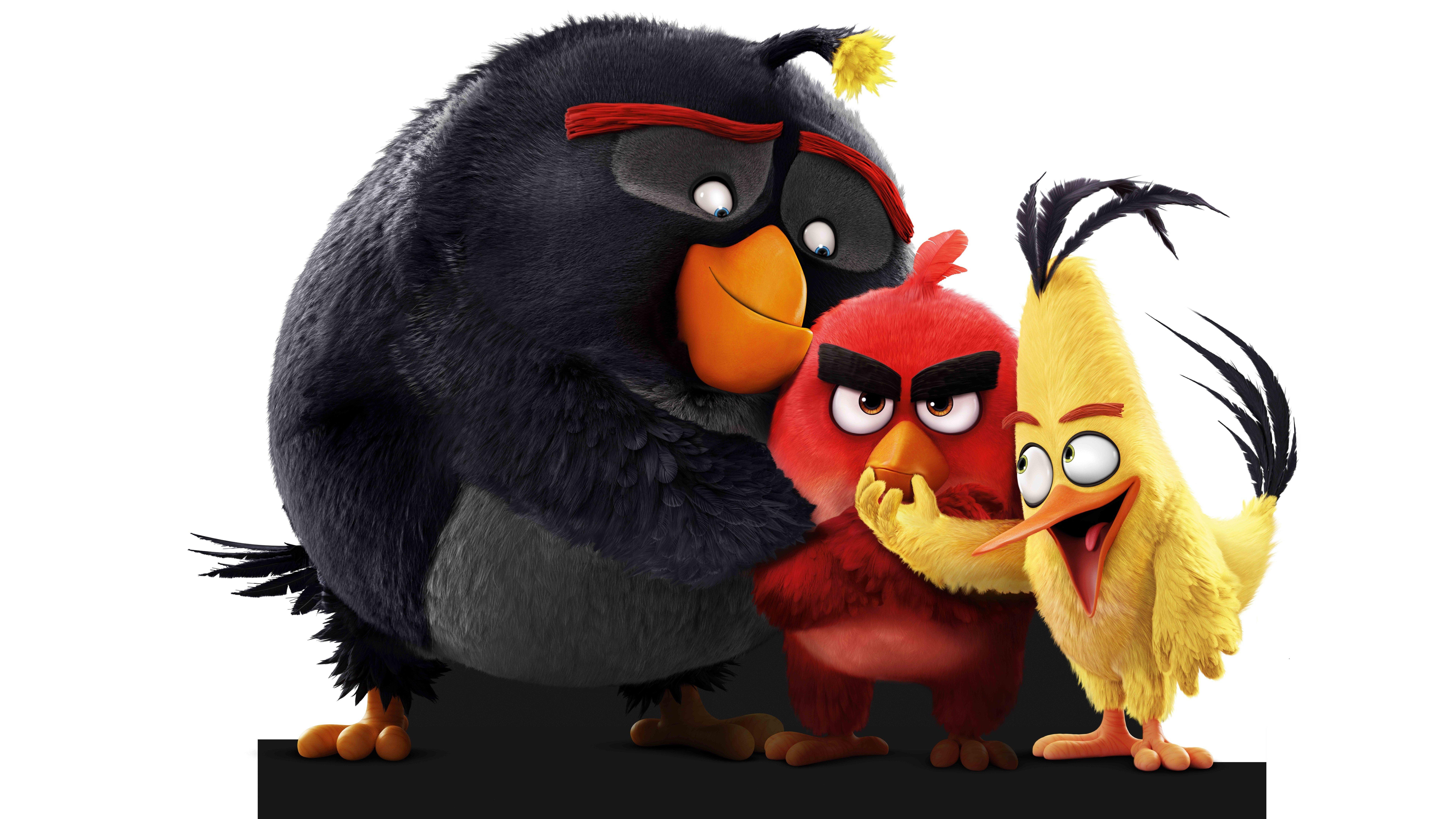 angry birds bilder
