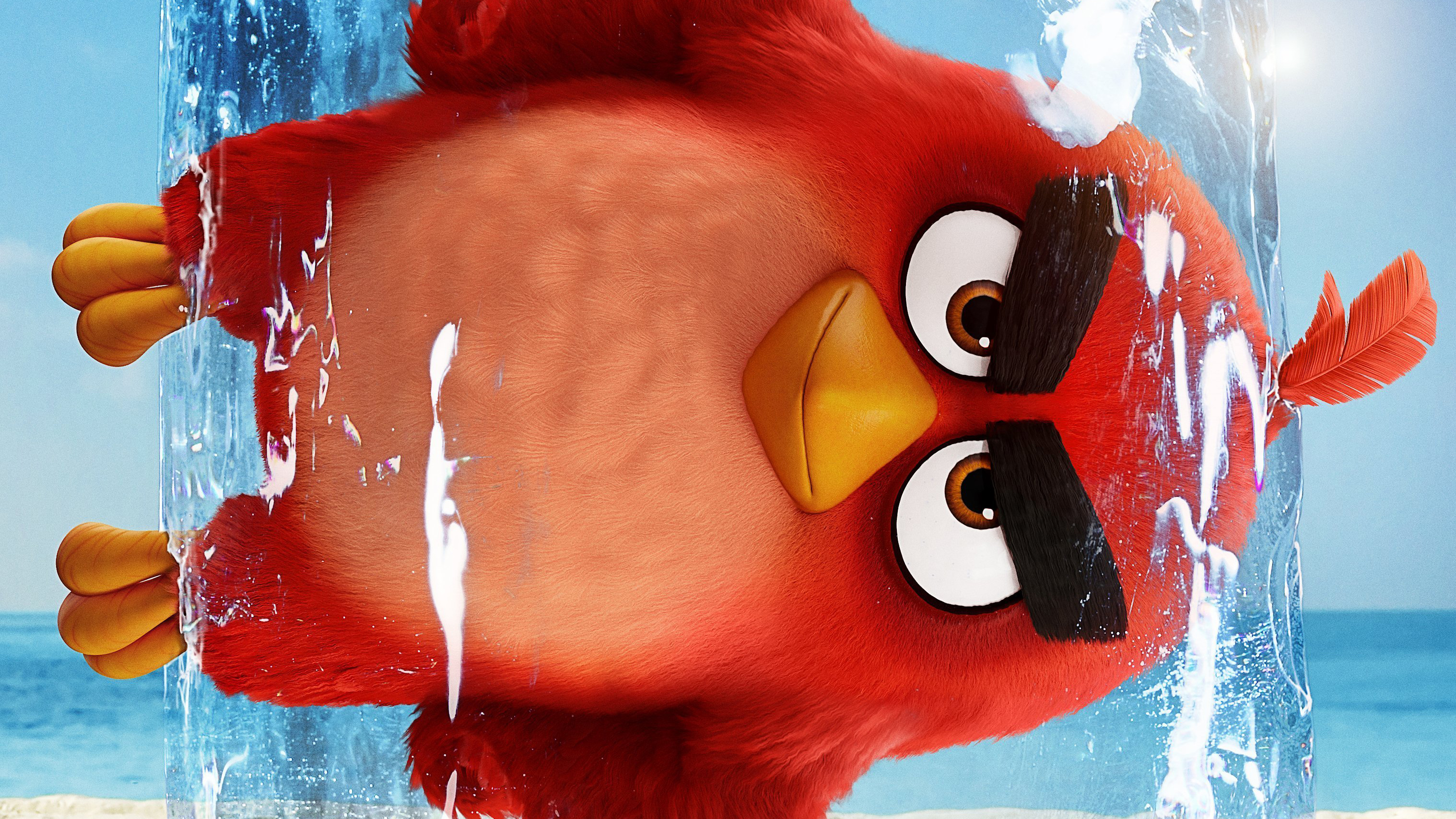 Movie Poster 2019: The Angry Birds Movie 2 2019, HD Movies, 4k Wallpapers