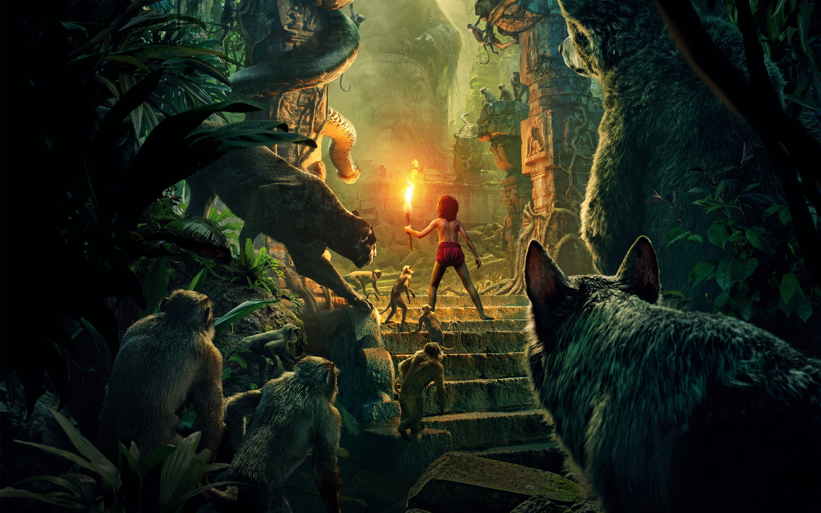 the jungle book 2016, hd movies, 4k wallpapers, images, backgrounds