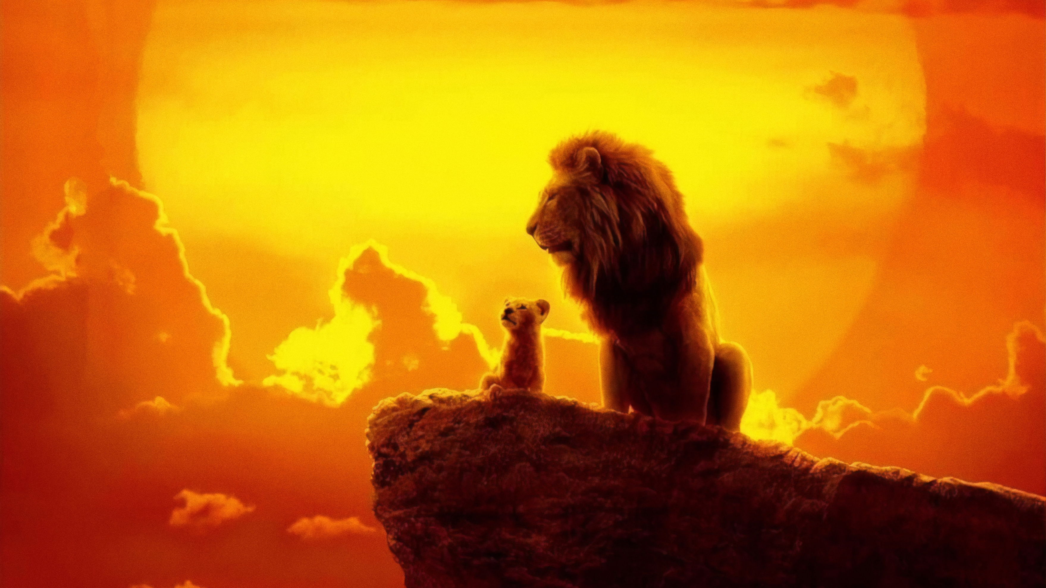 The lion king 2019 4k hd movies 4k wallpapers images - Lion 4k wallpaper for mobile ...
