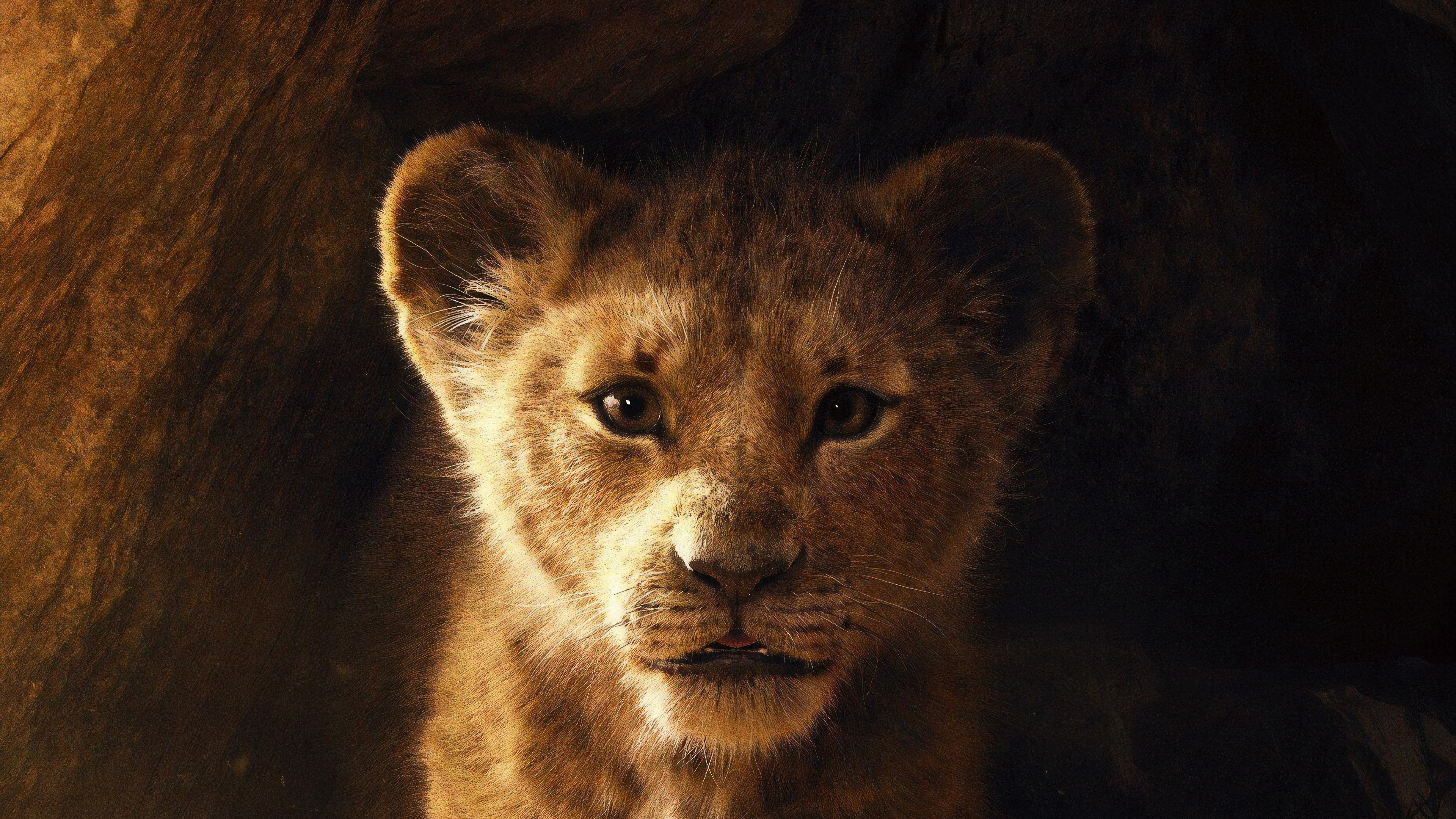 1125x2436 The Lion King 2019 Iphone Xs Iphone 10 Iphone X Hd