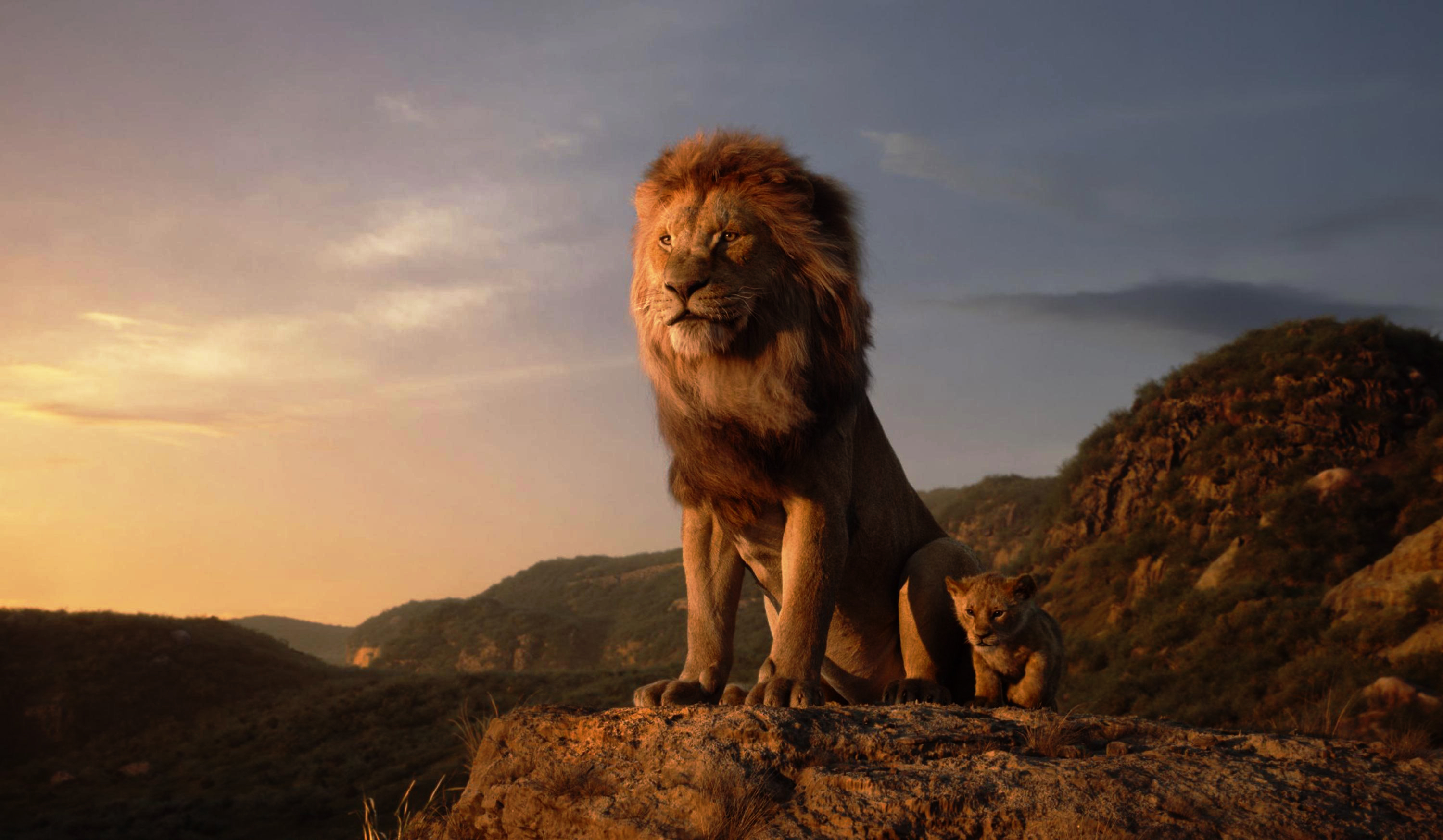 1920x1080 The Lion King 4k Laptop Full Hd 1080p Hd 4k Wallpapers