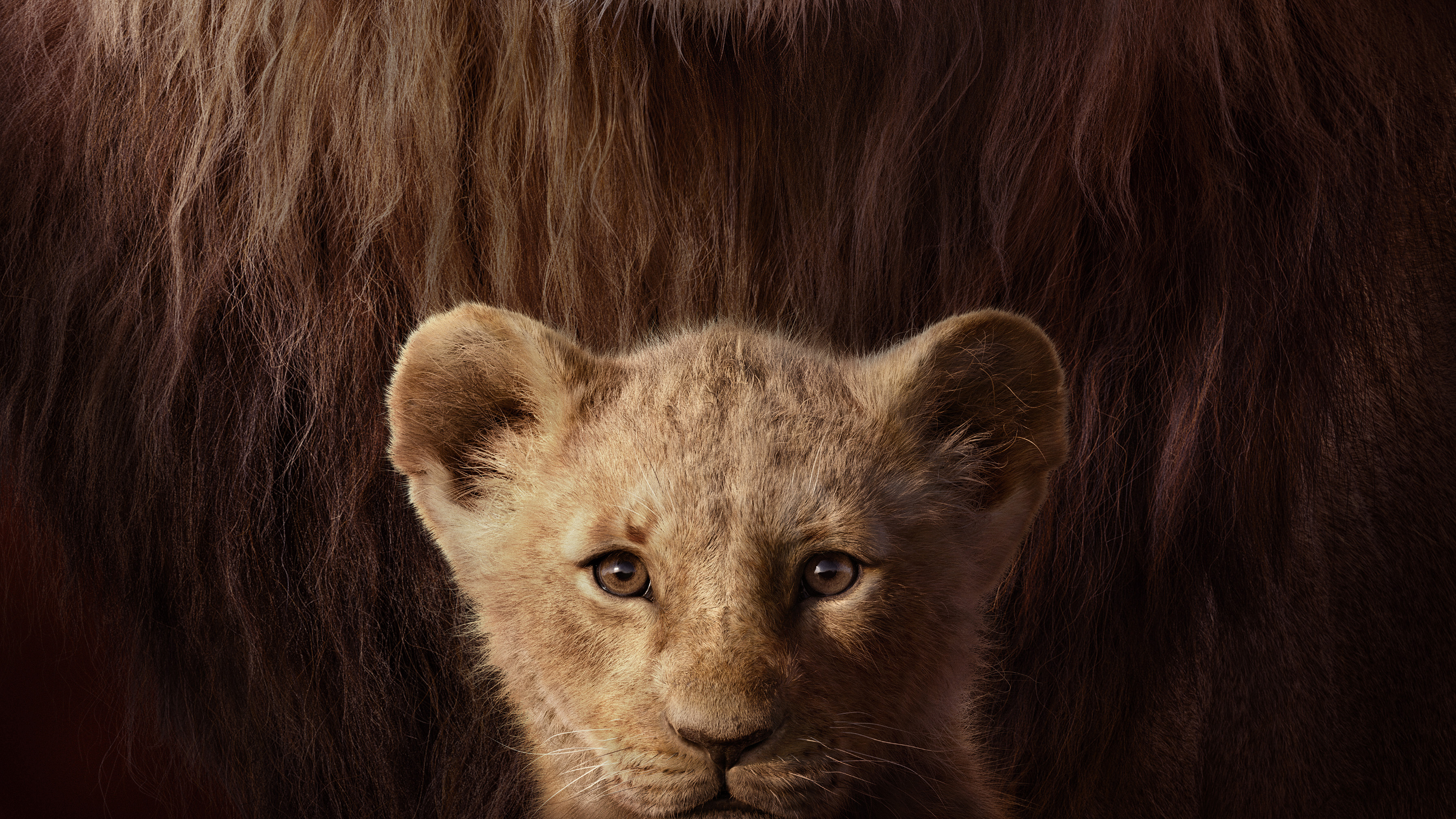 The Lion King Key Art 4k Hd Movies 4k Wallpapers Images