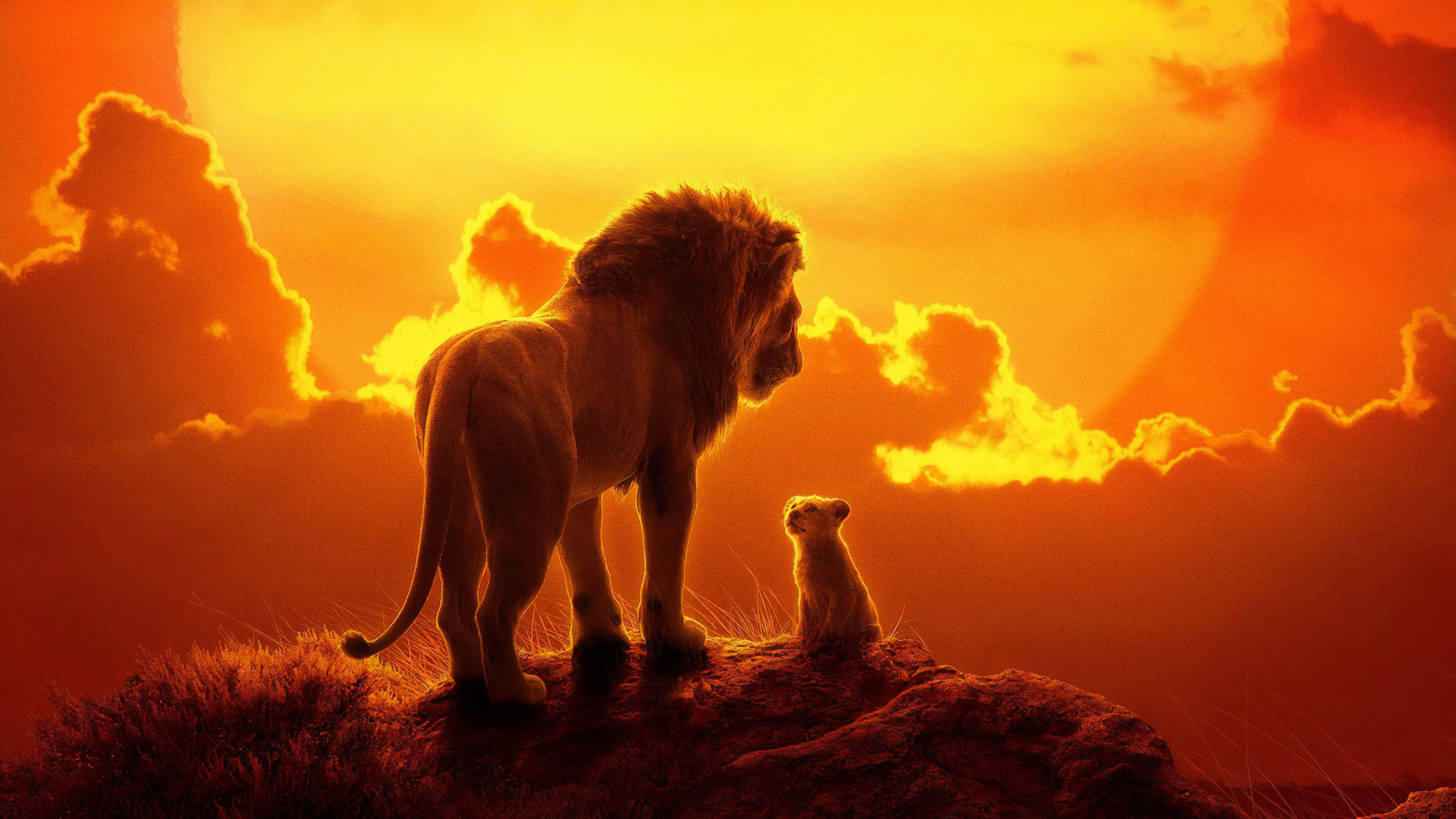 the lion king movie  hd movies  4k wallpapers  images