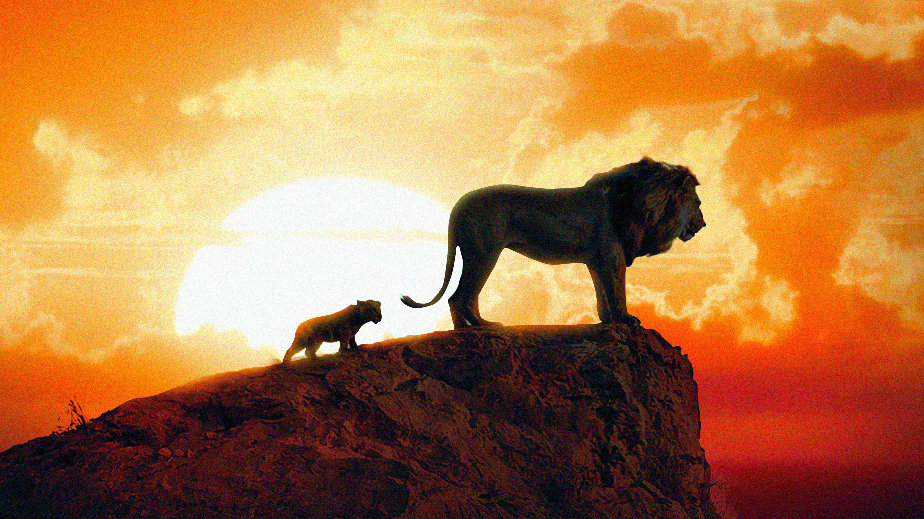 The Lion King New Poster Hd Movies 4k Wallpapers Images