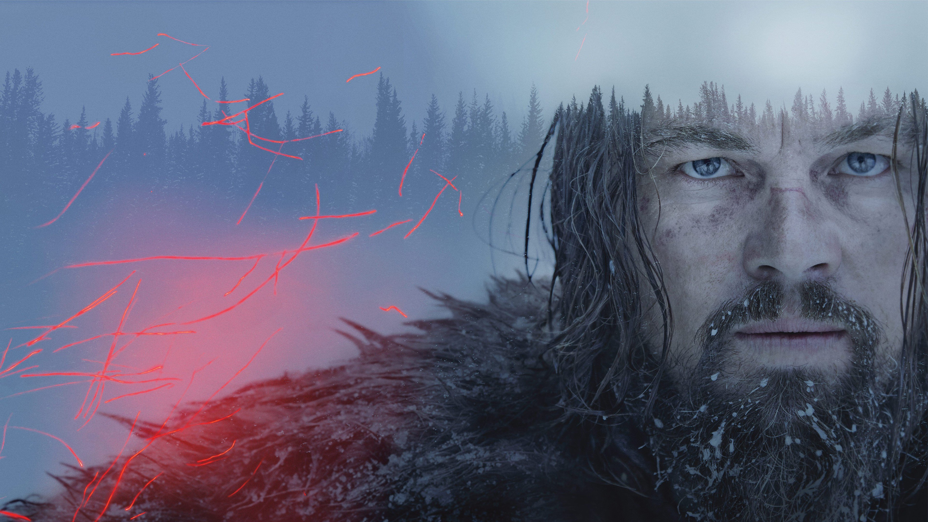 The Revenant Movie 2016 Hd Hd Movies 4k Wallpapers