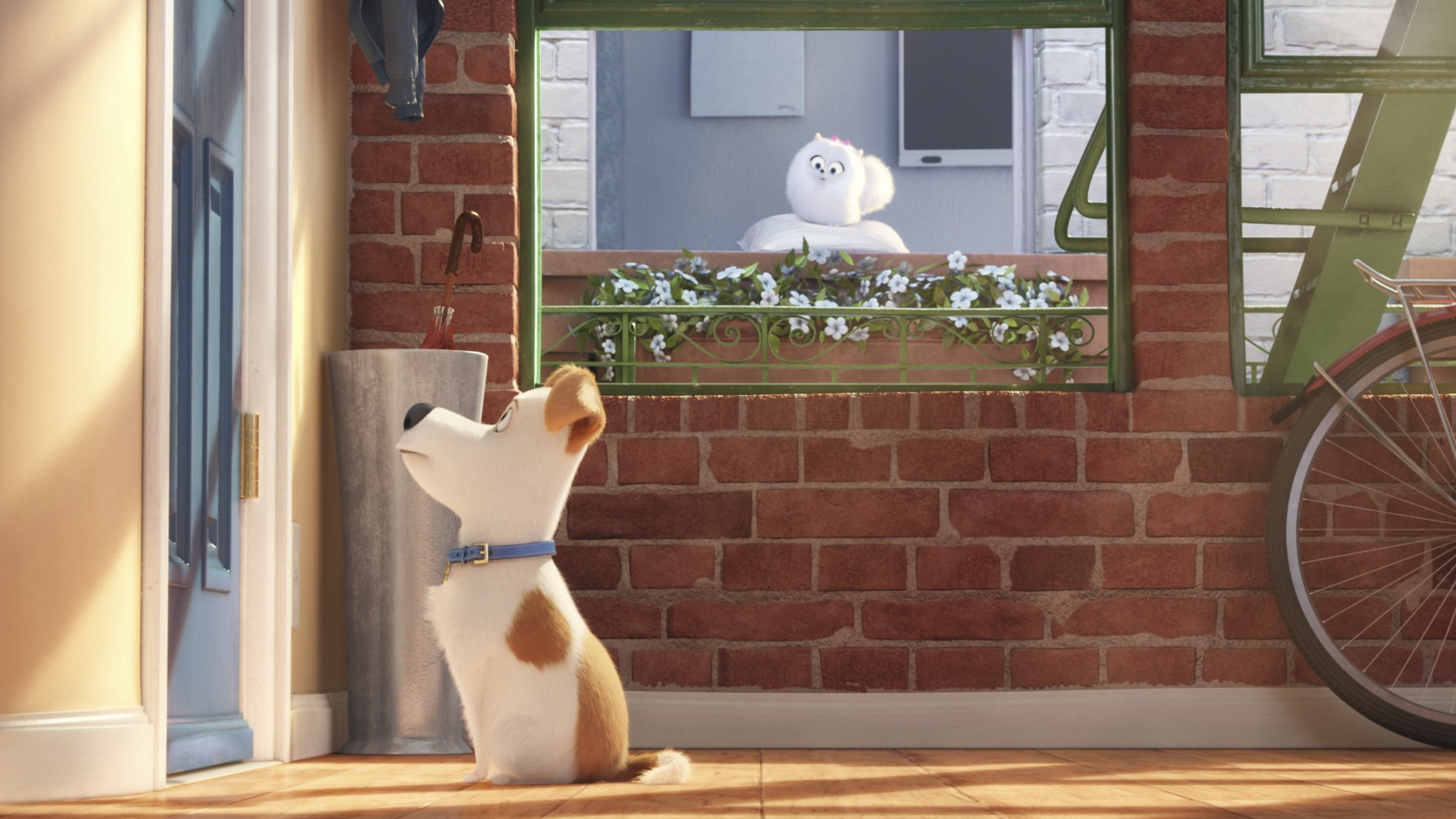 The Secret Life Of Pets 2016 Hindi Download: The Secrete Life Of Pets Movie Main Character, HD Movies
