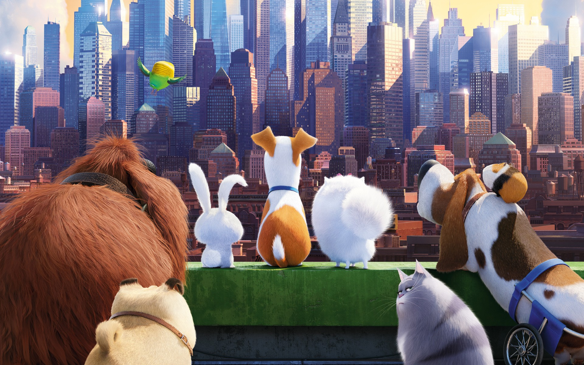 The Secrete Life of Pets Movie