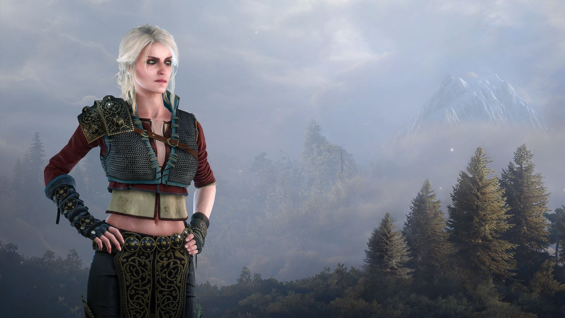 Download Witcher HD Wallpapers TechJeep