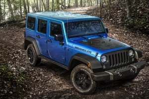 2016 Jeep Wrangler Black Bear Edition Wallpaper