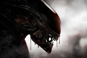 Aliens Xenomorph Creature 4k Wallpaper