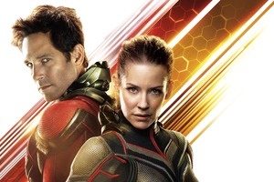 Ant Man And The Wasp Movie 12k Wallpaper