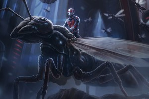 Ant Man Artwork