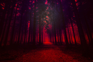 Artistic Red Forest