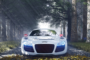 Audi R8 Special Edition