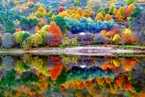 Autumn Scenery