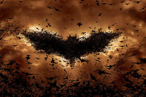 Batman Begins Bat Symbol Wallpaper