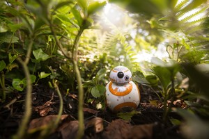 BB8 Star Wars