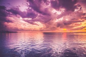 Beautiful Purple Sea And Pink Horizon Sunrise Wallpaper