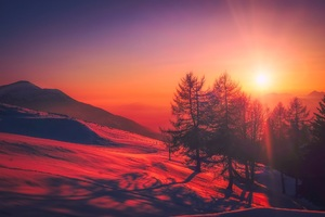 Beautiful Red Tone Sunrise Snow Trees