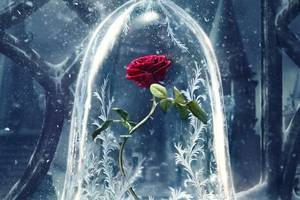 Beauty And The Beast Original 4k Wallpaper