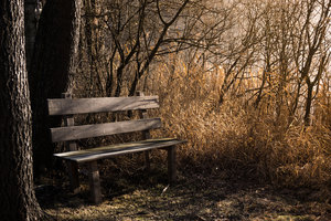 Bench Bank Seat 5k Wallpaper