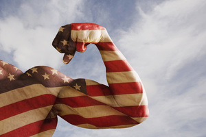 Biceps Usa Art Wallpaper
