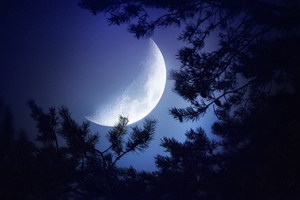Big Moon Dark Night Wallpaper