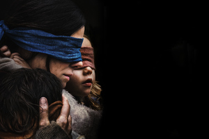 Bird Box 2018 Wallpaper