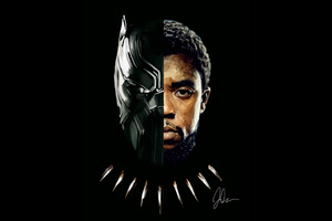 Black Panther T Challa 2018 Artwork 5k Wallpaper