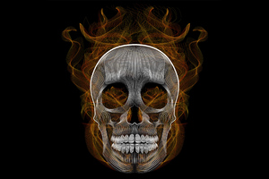 Blend Skull Vector Illustration Wallpaper