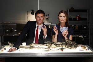Bones Tv Series Wallpaper