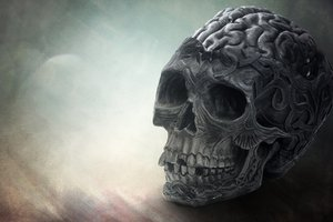 Brain Skull Wallpaper