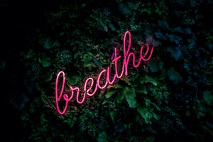 Breathe Nature Pink Wallpaper