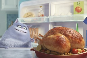 Cat Secrete Life Of Pets