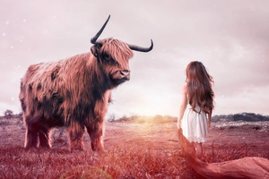 Child Bull Fantasy Wallpaper