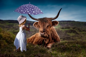 Child Cow Umbrella 5k Wallpaper