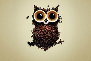 Coffee Beans Owl Art Wallpaper