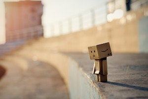 Danbo Photography Wallpaper
