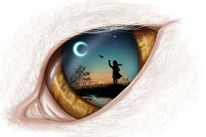 Dream In Eye Wallpaper