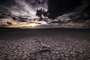 Dry Desert Wallpaper