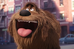 Duke Secret Life Of Pets