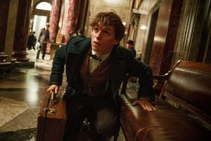Eddie Redmayne In Fantastic Beasts