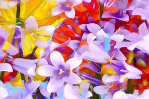 Flowers Art Abstraction Wallpaper