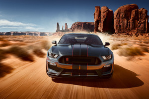 Ford Shelby GT500 2018 Car