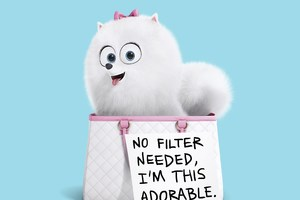 Gidget The Secret Life Of Pets Wallpaper