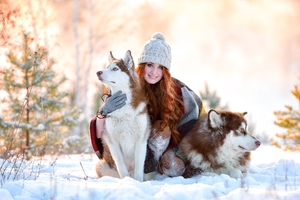 Girl In Snow With Siberian Husky Wallpaper