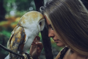 Girl With Owl Wallpaper