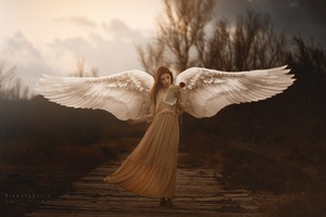Girl With Wings Angel